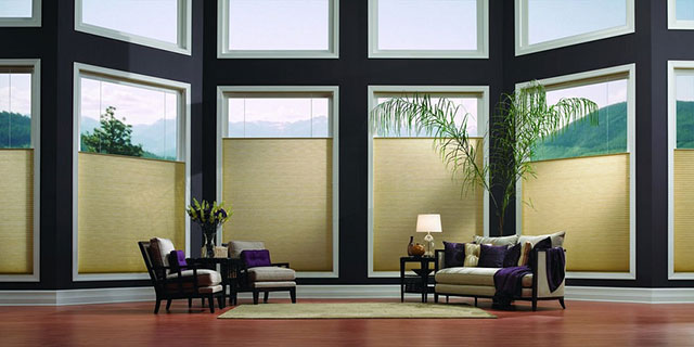 windowcoverings-honeycomb